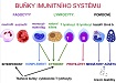 Imunokompetentní buňky